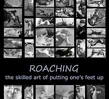 Roaching - the skilled art of putting one's feet up by GreyhoundSN