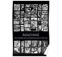 Roaching - the skilled art of putting one's feet up Poster