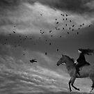 Follow me by Raymond Kerr