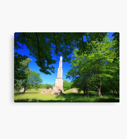 Nature and Culture  Canvas Print
