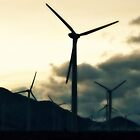 wind power~ by Brandi Burdick