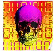 Skull circuit in a digital code. Poster