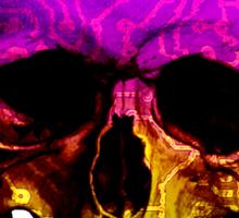 Skull circuit in a digital code. Sticker