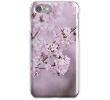 Cherry blossom in Spring. iPhone Case/Skin
