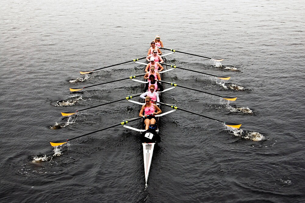 The Head Of The Charles Regatta 2 by d1373l