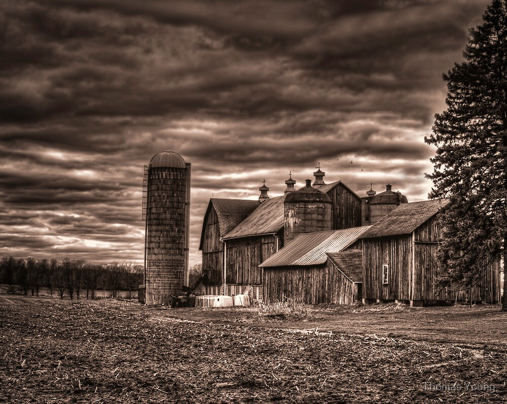 Huge Wisconsin Farm by Thomas Young