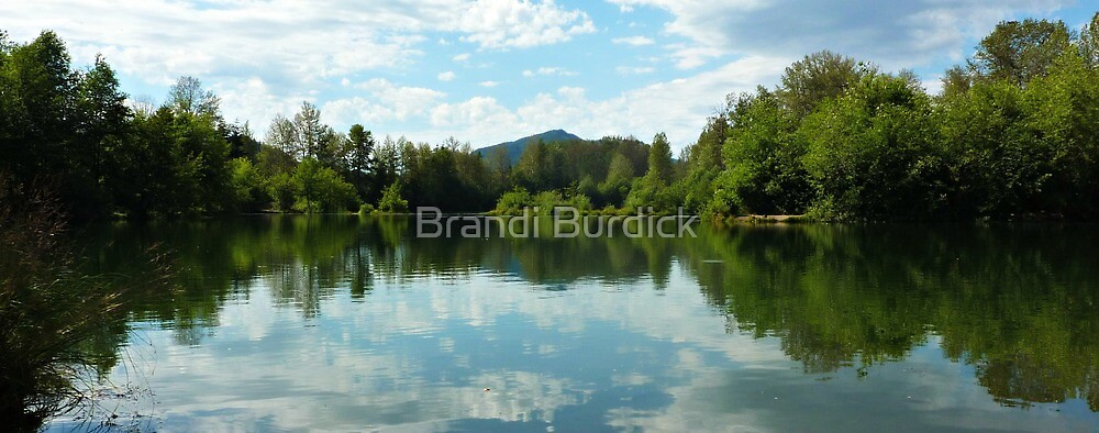 lake side reflecting~ by Brandi Burdick