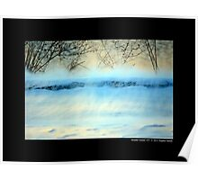 Winter Breeze By The Spring Lake - Middle Island, New York Poster