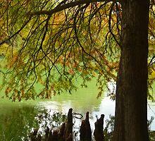 Botanical Garden in Fall by EmmaLeigh