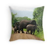 """""""Hey, Take My Picture!"""" Throw Pillow"""
