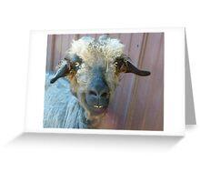 Say Cheese! © Greeting Card