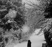 Dog walker in the snow (Eastbourne, 2013) by JJFA