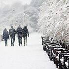 Four in the snow (Eastbourne, 2013) by JJFA