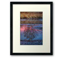 Between Beauty Framed Print