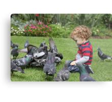 Eli and the Pigeons Metal Print