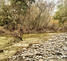 Alameda Creek, Sunol Regional Wilderness by James Watkins