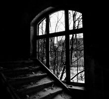 Where the light falls in by Nicole W.