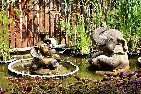 Fun Fountains by missmoneypenny