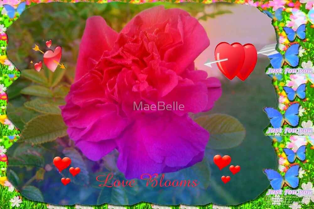 Rainbow of Hearts and a Rose..valentine card, by MaeBelle