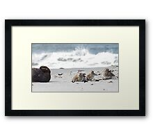 Beach Family Framed Print