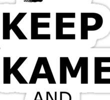 Keep Kame and Hame Ha Sticker