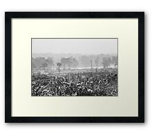 Ashdown Forest in the Snow Framed Print