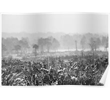 Ashdown Forest in the Snow Poster
