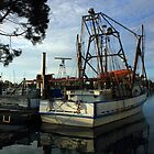 Old Fishing Boat at Yamba by Carol James