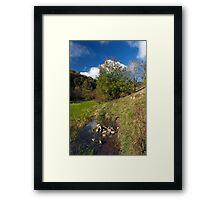 Monk's Dale Framed Print