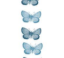 Aqua Butterflies by pencreations