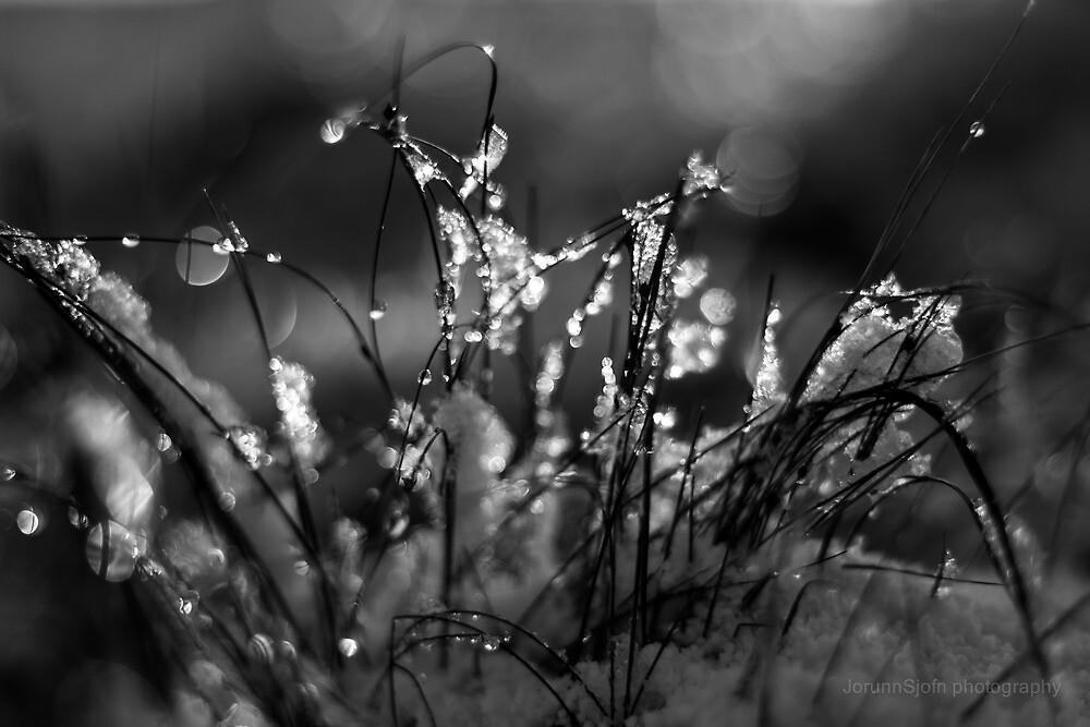 light in the dark by JorunnSjofn Gudlaugsdottir