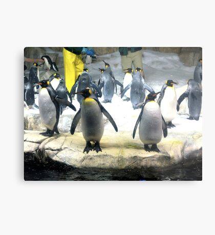 Penguin Army Metal Print