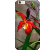 Just a lovely Orchid iPhone Case/Skin