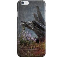 dead stump & lupines, Johnston's Ridge iPhone Case/Skin