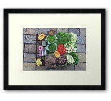 Vegetable barrow, Pune Framed Print