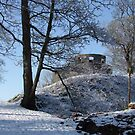Dinefwr Castle Turret in snow-01 by Pat - Pat Bullen-Whatling Gallery