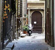 Cortona, Tuscany by Ros Bell