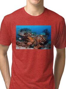 Reef Boss Tri-blend T-Shirt