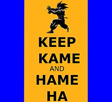 Keep Kame and Hame Ha Iphone case by eclipzeundersco
