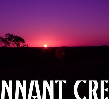 "Day 24 | 365 Day Creative Project  ""Tennant Creek"" by Robyn Williams"