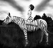 The Zebra [b&w] by MattAdamikPhoto