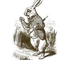 Alice in Wonderland White Rabbit by pencreations