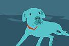 Bobdog by Matt Mawson