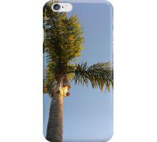 Malibu iPhone Case/Skin
