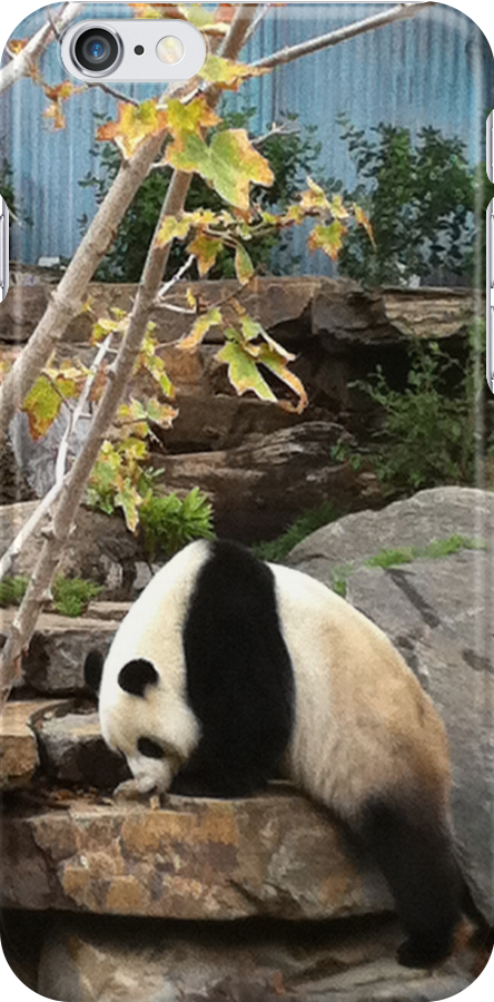 Panda by ThePaintedLady