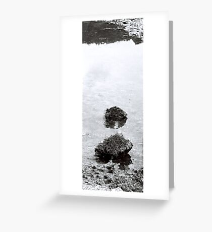 Islands in the Puddle VRS2 Greeting Card