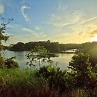 Sunset over the Panamanian jungle  by Eti Reid
