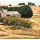 Rural scene at my back door.. by Elaine Game