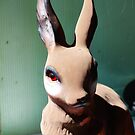 Garden Rabbit  by vivendulies