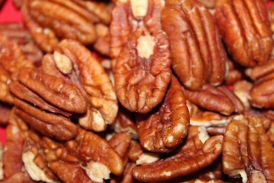 Pecans ready for a Pie by AnnDixon